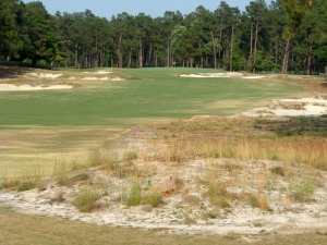 Pinehurst No 2 - The restoration of the native sandy/waste areas will provide a unique test this week.